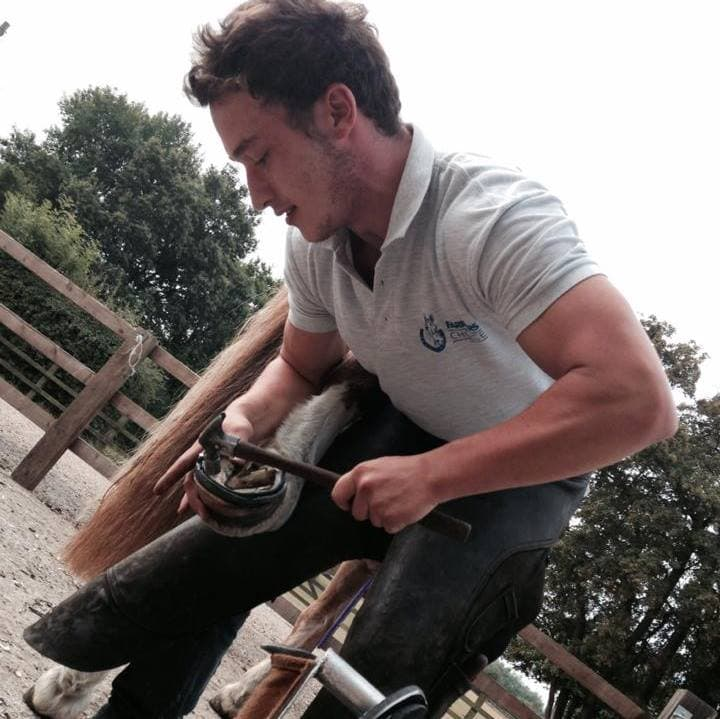 Lewis Sharp a farrier from Barton Blacksmiths services nailing on a shoe.