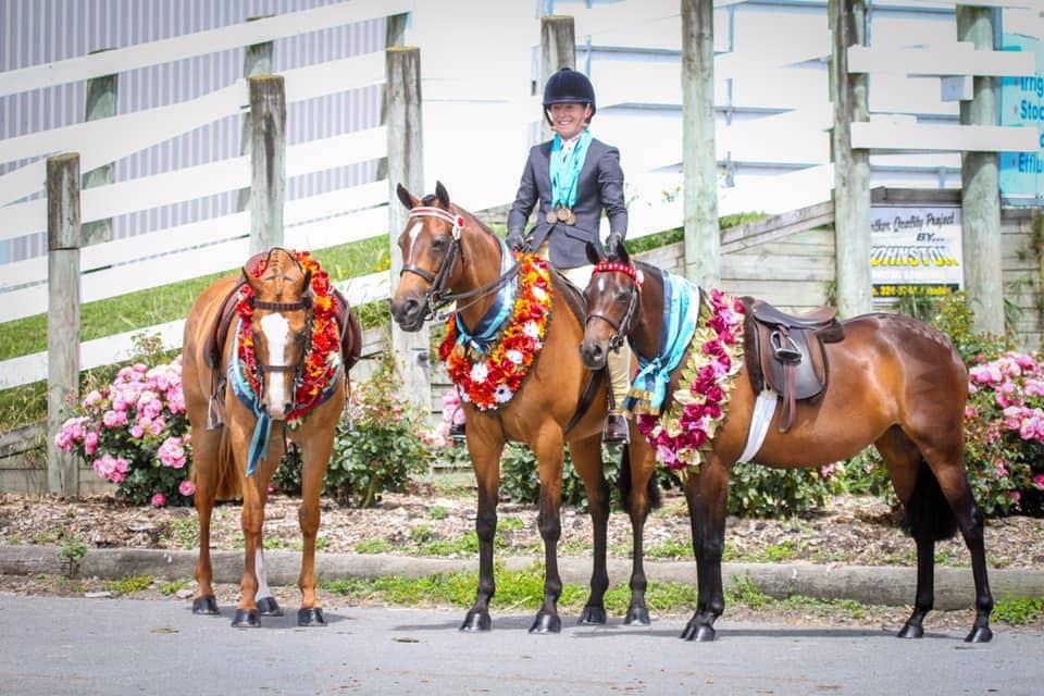 Natasha Waddell Equestrian