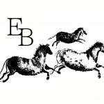 Ellen Bennet Horsemanship